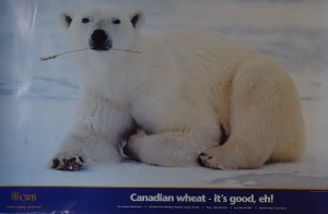 CWB Polar Bear